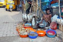 Indian Fish Seller royalty free stock image
