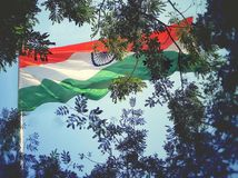 Indian Flag. Indian national flag stock photo