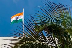 Indian flag on the roof. Blurred palm tree in foreground stock photography