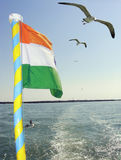 Indian Flag & Seagull Stock Photos