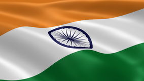 Indian flag in the wind stock video
