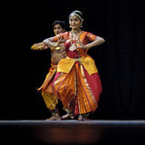 Indian folk dancers Stock Images