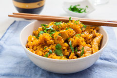 Indian food on bowl Royalty Free Stock Photos