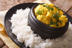 Indian food is chicken Korma with a side dish of basmati rice cl Stock Image
