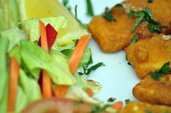 Indian food. Close-up of crispy Indian food served with salad Royalty Free Stock Image