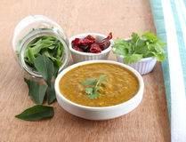 Indian Food Curry Leaves Chutney Royalty Free Stock Photography