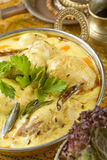 Indian food, Kadhi. Royalty Free Stock Photography