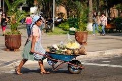 Indian från Bolivia som säljer frukter från skottkärran på stadsgator Royaltyfri Bild