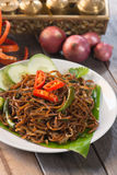 Indian fried noodle Royalty Free Stock Image