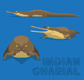 Indian Gharial Cartoon Vector Illustration Stock Images