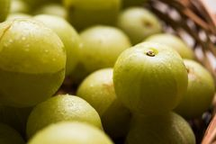 Indian gooseberry or Amla or avla fruit, selective focus Royalty Free Stock Images