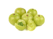 Indian Gooseberry, Emblic myrablan, Malacca tree Stock Photography