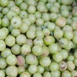 Indian gooseberry Royalty Free Stock Photos