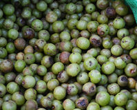 Indian gooseberry Royalty Free Stock Photography