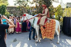 Indian groom ridding white horse with yellow and red pattern fabric, flower necklace and red turban with guests. Stock Photography