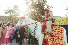 Indian groom ridding white horse with yellow and red pattern fabric, flower necklace and red turban with guests. Royalty Free Stock Photography