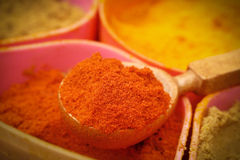 Indian ground spices Stock Photos