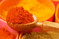 Indian ground spices Stock Image