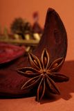 Indian herb anise star Stock Photography