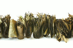 Indian herbal tea Stock Photography
