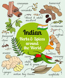 Indian herbs and spices. Stock Photo