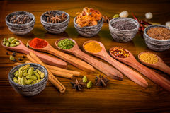 Indian herbs and spices Royalty Free Stock Photography