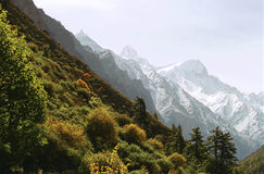 Indian Himalaya. Near the spring of Ganges River, Uttaranchal, India royalty free stock images