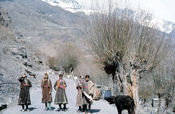 1977. India. Young girls on the road near Tandi. The picture shows, 5 Young girls in their local customes, on the road near Tandi Royalty Free Stock Photo