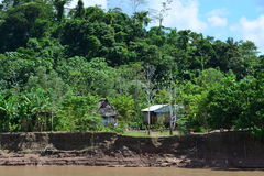 Indian houses in the Amazon jungle, Peru Stock Images