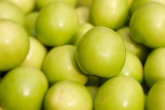 Indian jujubes Stock Photo