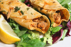 Indian Kebabs. Close-up of chicken tikka kebabs on a bed of lettuce Stock Photography