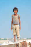 Indian kid on salt farm Stock Image
