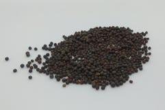 Indian kitchen, food ingredients mustard seeds