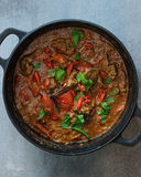 Indian Lamb Curry. Spicy Indian Chili Lamb Curry Royalty Free Stock Photos