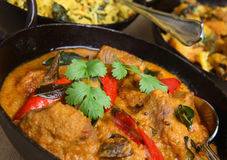Indian Lamb Korma Curry. Lamb korma with rice and vegetable curry Stock Photos