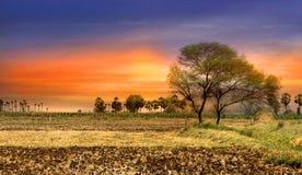 Indian Landscape Stock Images