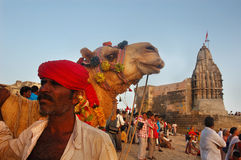 Indian Lifestyle Royalty Free Stock Photo