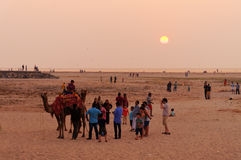 Indian local tourists with a camel on the beach at sunset Stock Photo