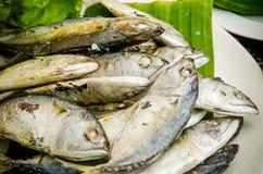 Indian Mackerel. Steamed indian mackerel on banana leave Royalty Free Stock Images