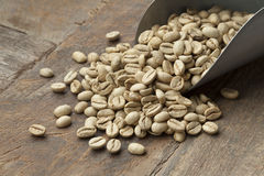 Indian Malabar green unroasted coffee beans Stock Photos