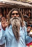 Indian male monk with a long beard royalty free stock images