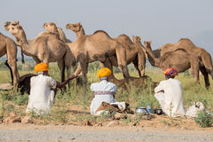 Indian man attended the annual Pushkar Camel Mela. Royalty Free Stock Photo