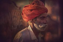 Old Rajasthani man against the background of his camels Royalty Free Stock Photos