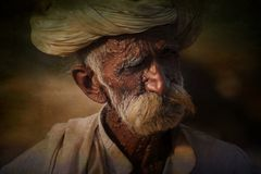 Old Rajasthani man against the background of his camels Stock Photography