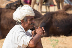 Indian man and camel in Pushkar, India Royalty Free Stock Images