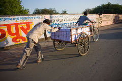 Indian man carrying books on rickshaw cart Royalty Free Stock Photography
