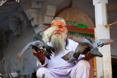 Indian man feeding pigeons near holy lake, Pushkar, India Stock Image