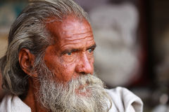 Indian Man Stock Image
