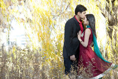 Indian Man Kissing Forehead of Bride. A young Indian men kissing the forehead of his Indian bride who is wearing a Sari and both are standing under a willow tree Stock Photography