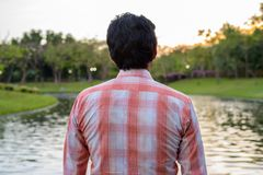 Indian man looking at scenic view of the lake in peaceful green. Park royalty free stock photos